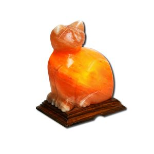 Evolution Salt - Animal Shape Salt Lamps Cat