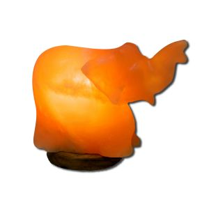 Evolution Salt - Animal Shape Salt Lamps Elephant